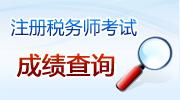 注册税务师成绩查询