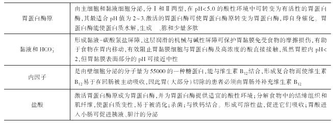 2019年临床执业助理医师《生理学》考点速记(3)