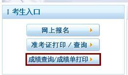 辽宁2019年执业护士资格证考试网上成绩查询入口
