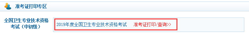 陕西2019主管护师准考证打印系统:中国卫生人才网