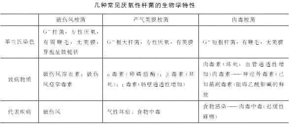 2019年临床执业医师考试《医学微生物学》考点(3)