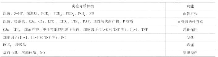 临床执业医师考试《病理学》复习考点(3)