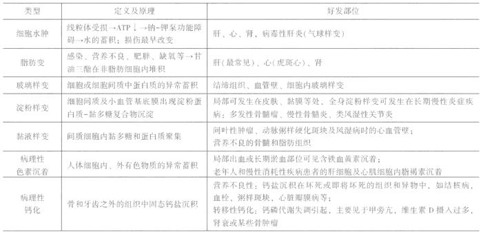 临床执业医师考试《病理学》复习考点(4)