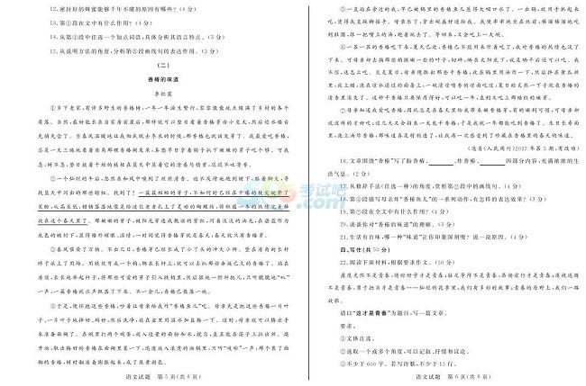 考试吧:2017山东聊城中考《语文》试题及答案