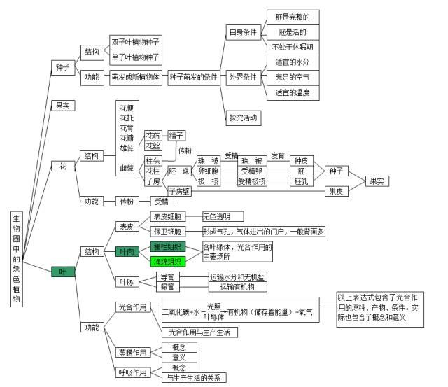 2020中考生物知识点结构图分类整理:生物圈中的绿色植物