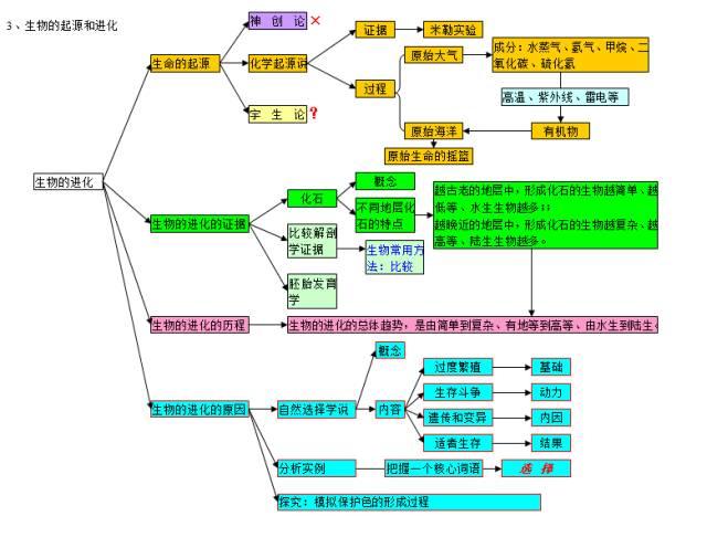 2020中考生物知识点结构图分类整理: 生物的多样性